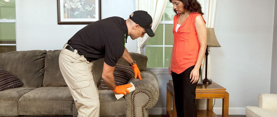 Ahwatukee, AZ carpet upholstery cleaning
