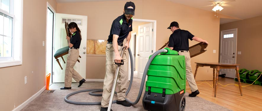 Ahwatukee, AZ cleaning services
